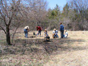 Stoney Creek planting2