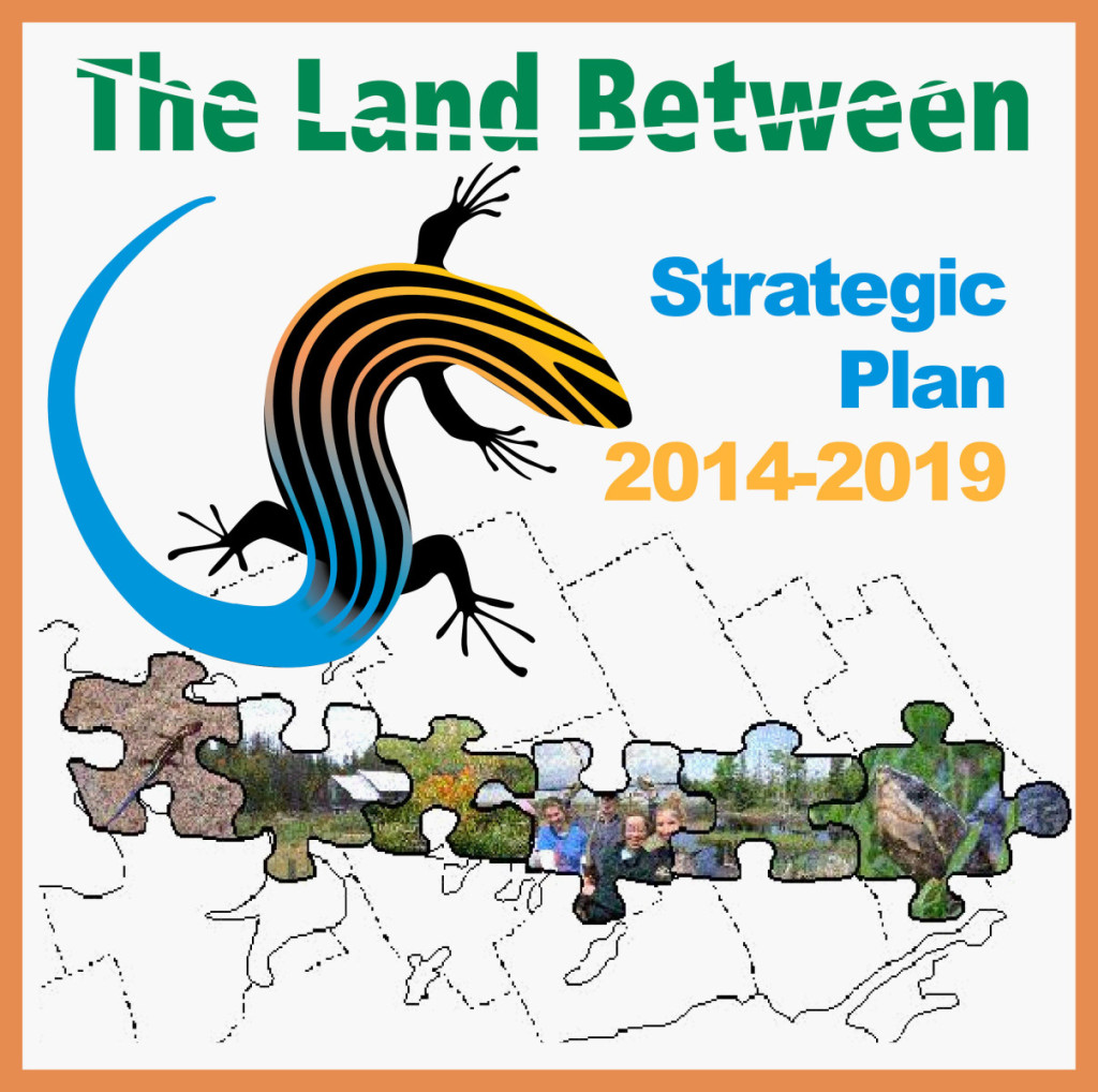 strategy TLB full colour