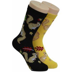 Squirrel Socks Foozys